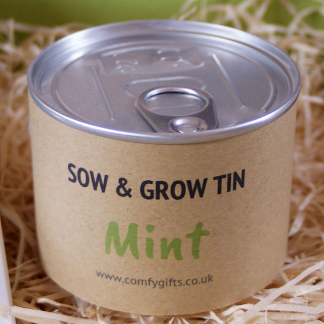 Grow your own mint - better than flowers get well soon gifts UK
