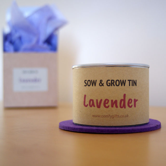 Lavender grow your own gift set for women