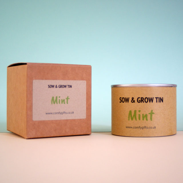 Mint plant get well gift ideas for her UK delivery